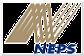 NEPS LLC Logo